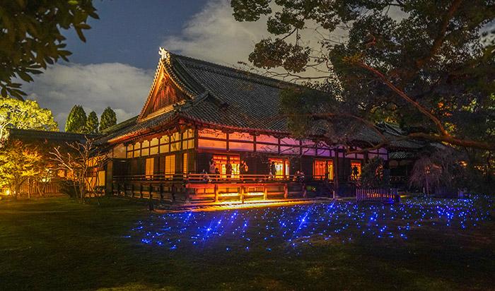 Light up view of Shoren-in Temple