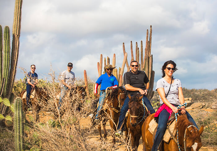 Aruba Horseback Riding