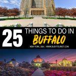 Things To Do In Buffalo