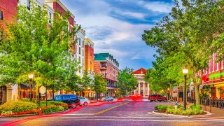 Things To Do In Gainesville Florida