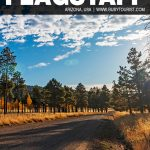 fun things to do in Flagstaff