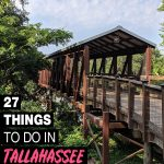 fun things to do in Tallahassee