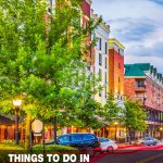 things to do in Gainesville, FL