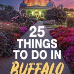 things to do in buffalo ny