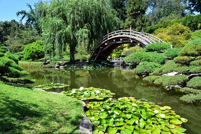 Huntington's Japanese Garden