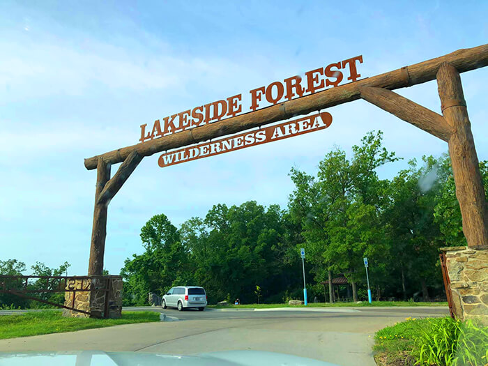 Lakeside Forest Wilderness Area