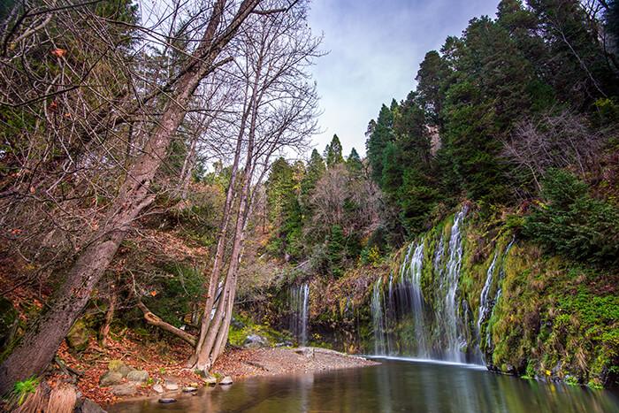 Mossbrae Fall, California