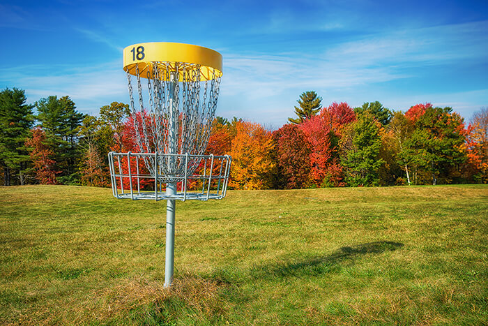 Disc golf hole basket