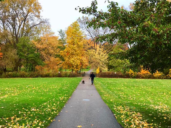 Lake Erie Arboretum at Frontier Park