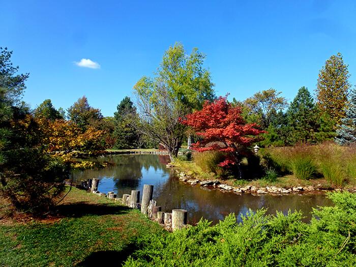 Mizumoto Garden Waterway