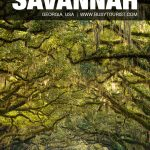 places to visit in Savannah, GA