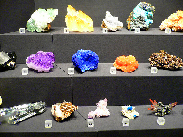 University Of Wisconsin Geology Museum