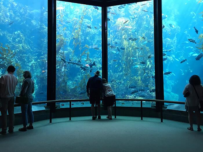 Monterey Bay Aquarium