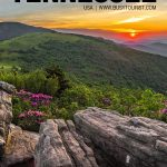 fun things to do in Tennessee