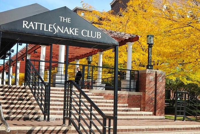the rattlesnake club