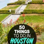 fun things to do in Housto
