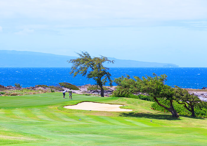 Kapalua Resort Golfing