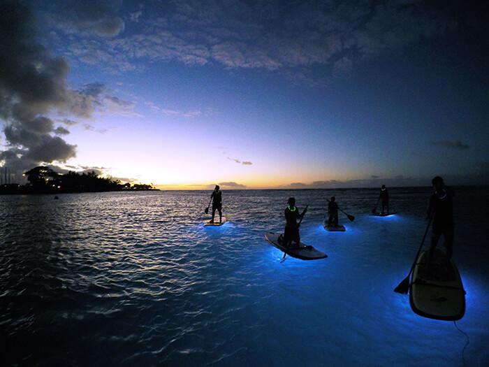 Nocturnal Adventures Hawaii