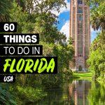 fun things to do in Florida
