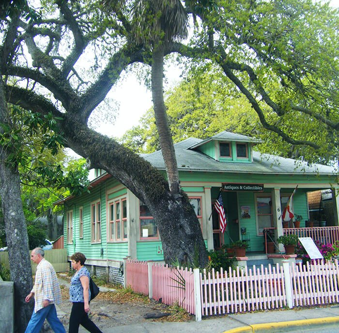 The Love Trees of St. Augustine