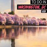 fun things to do in Washington, DC