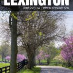 things to do in Lexington, KY
