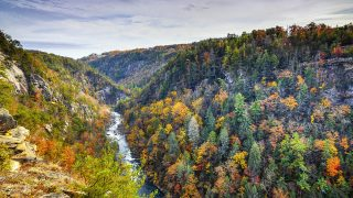 things to do in in Georgia