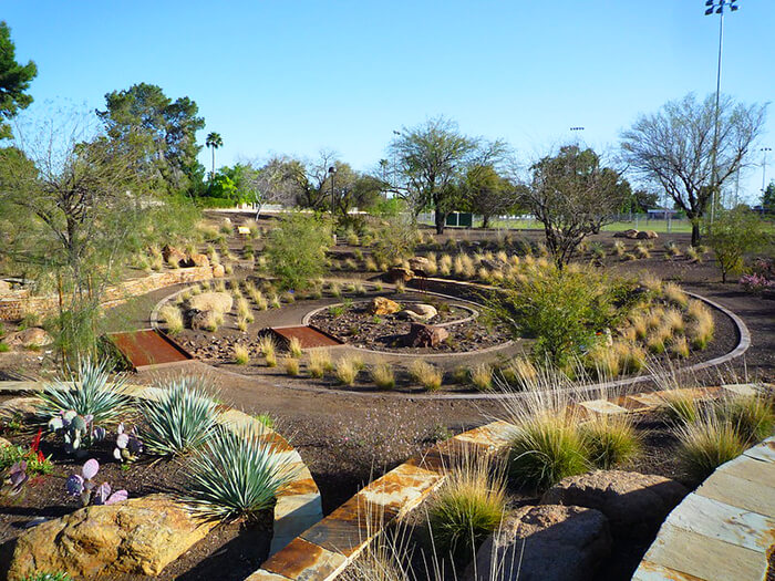 The Scottsdale Xeriscape Garden