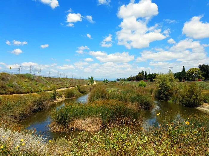 Dominguez Gap Wetlands