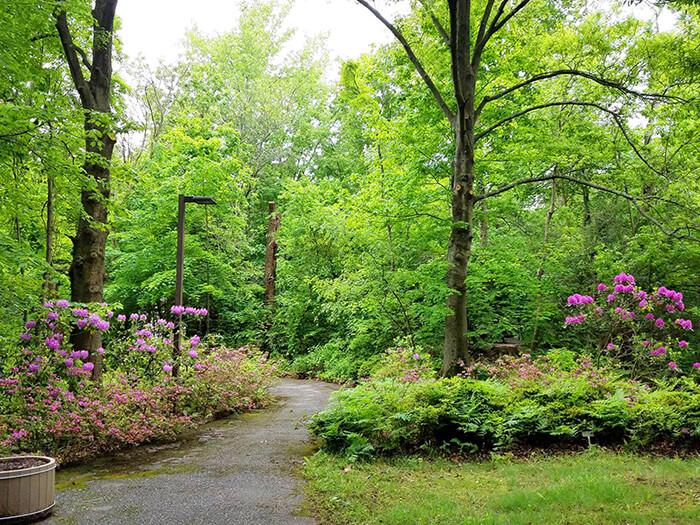 Helen Avalynne Tawes Garden