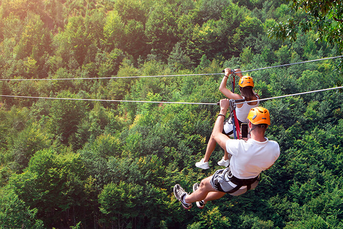 Lark Valley Ziplines