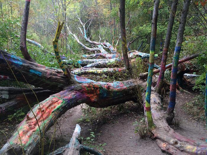 The Hippie Tree