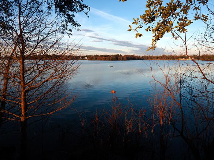 University Lake