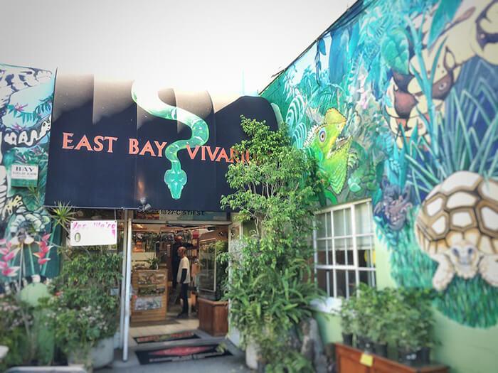 East Bay Vivarium