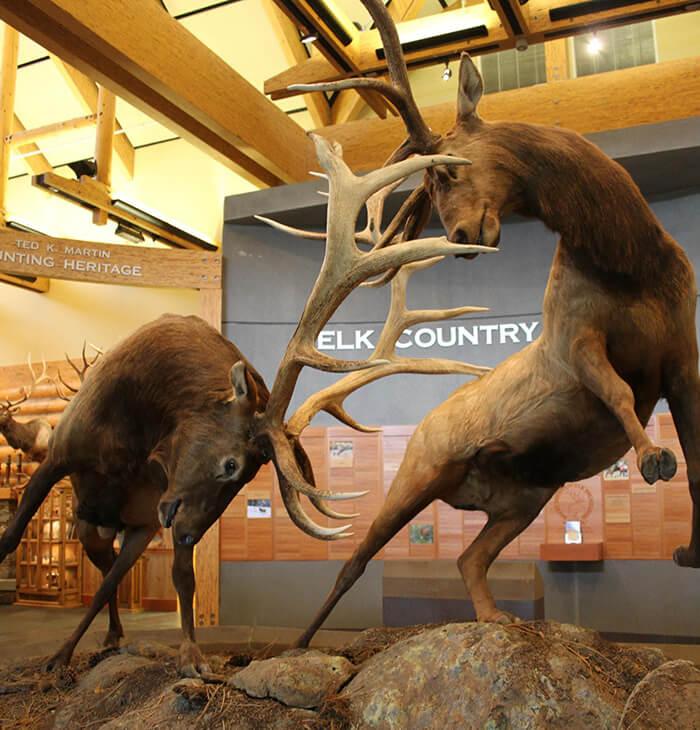 Elk Country Visitor Center