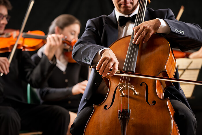 Missoula Symphony Orchestra and Chorale