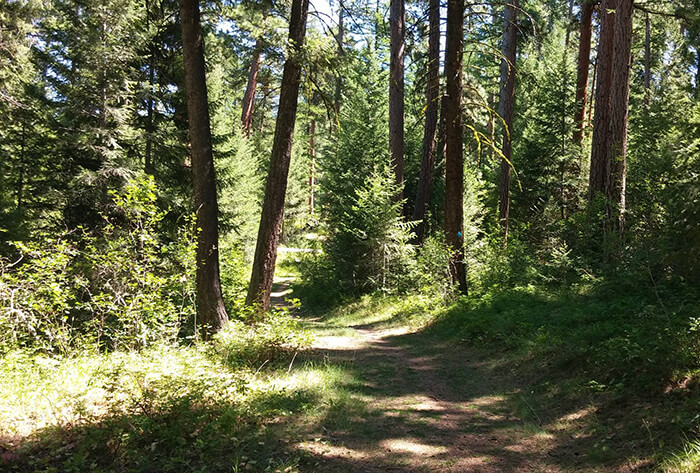 Pattee Canyon Recreation Area