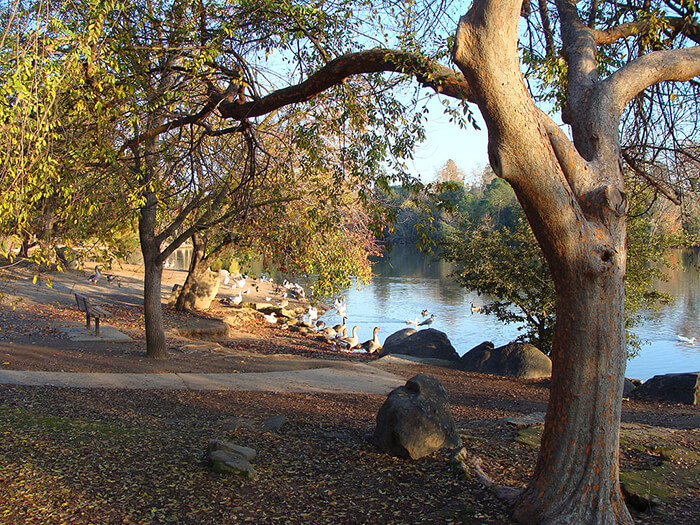 Woodward Regional Park