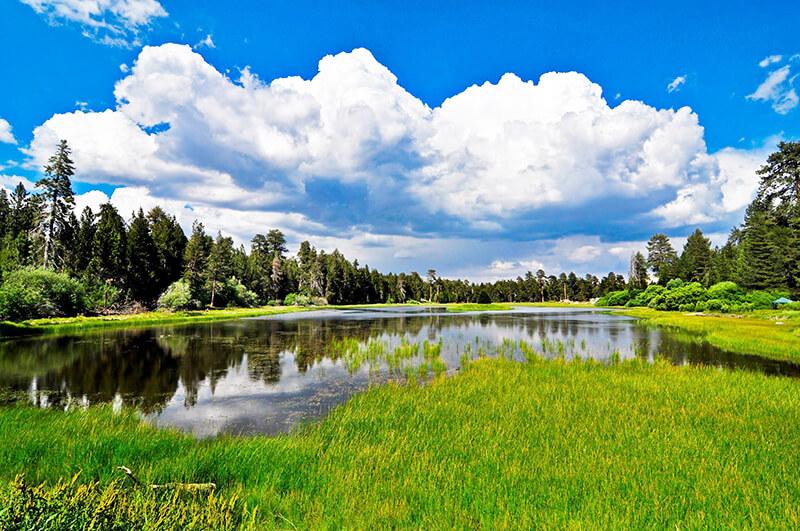 Bluff Lake Reserve