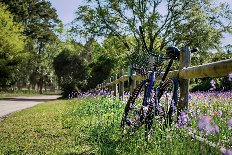 Hilton Head Island Bike Trails
