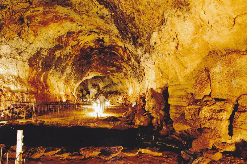 Idaho's Mammoth Cave & Shoshone Bird Museum Of Natural History