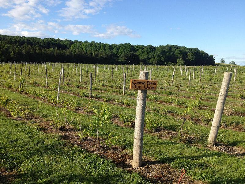Snow Farm Vineyard & Winery
