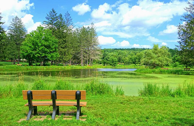 Benson Park