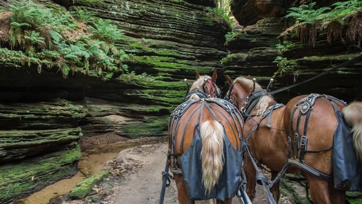 Things To Do In Wisconsin Dells