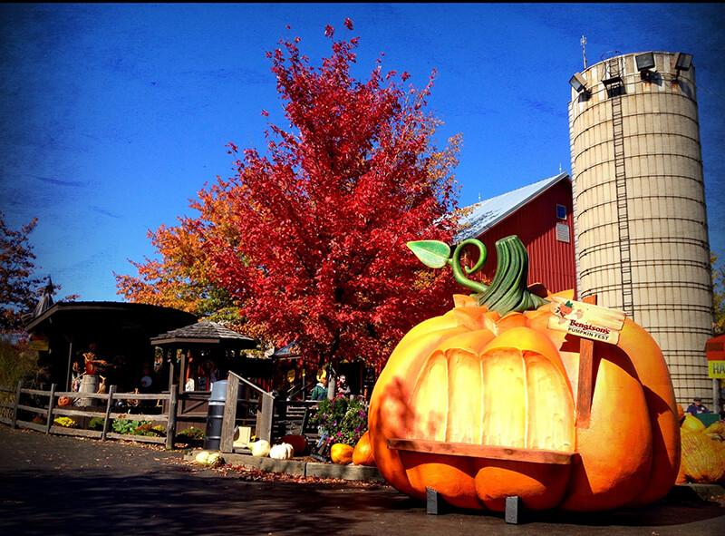 Bengtson's Pumpkin Farm